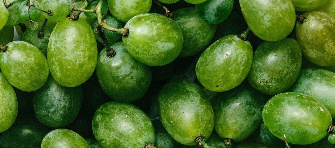 Winogrona – dlaczego warto je jeść ?
