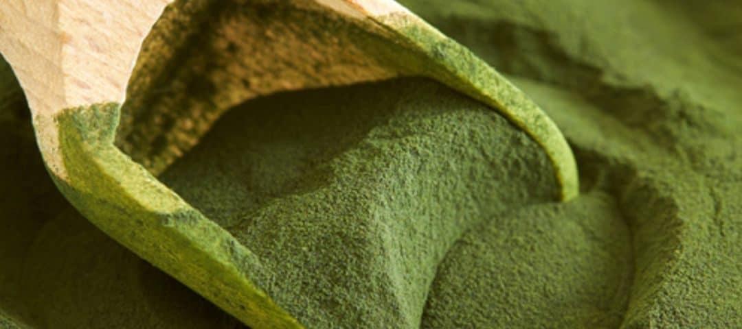 Moc alg czyli o pozytywnym wpływie spiruliny na organizm