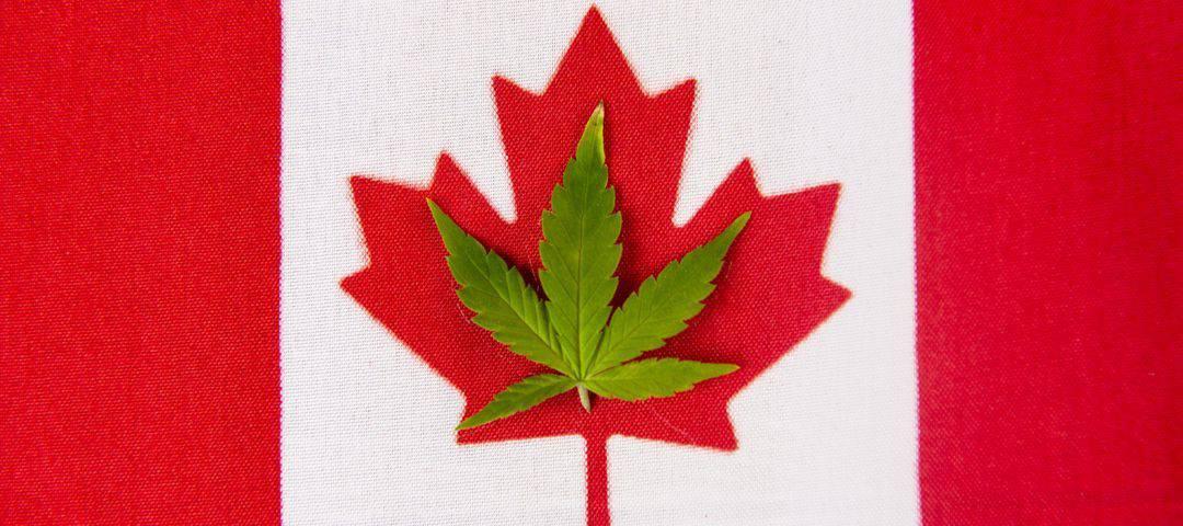 Rekreacyjna marihuana jest już oficjalnie legalna w Kanadzie