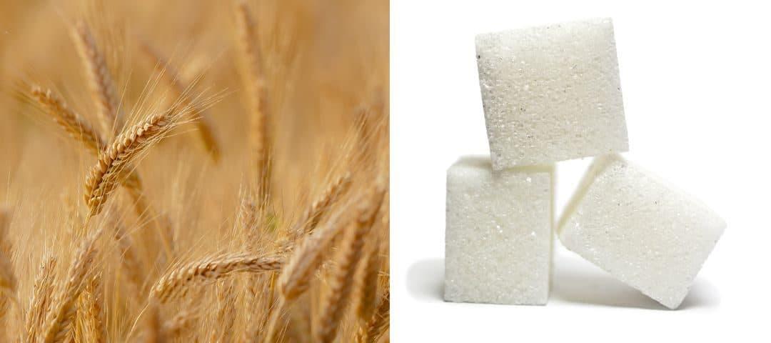 Co bardziej szkodzi – cukier czy gluten?