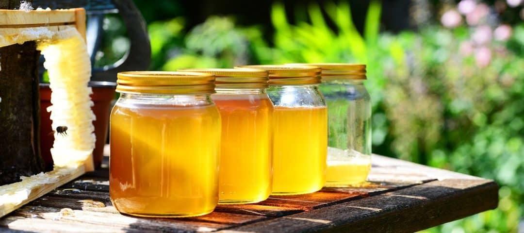 Rodzaje miodów – który miód jest najzdrowszy?