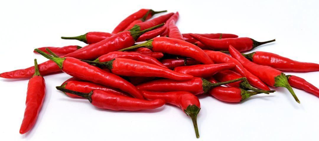Papryka chilli – rodzaje, właściwości zdrowotne, przeciwwskazania