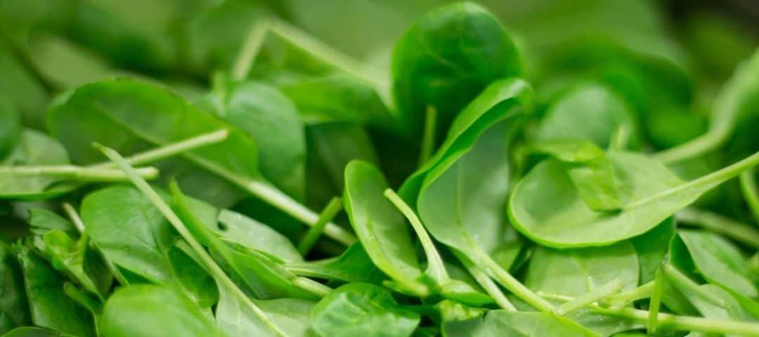 Szpinak – jakie wartości i właściwości zdrowotne posiada?