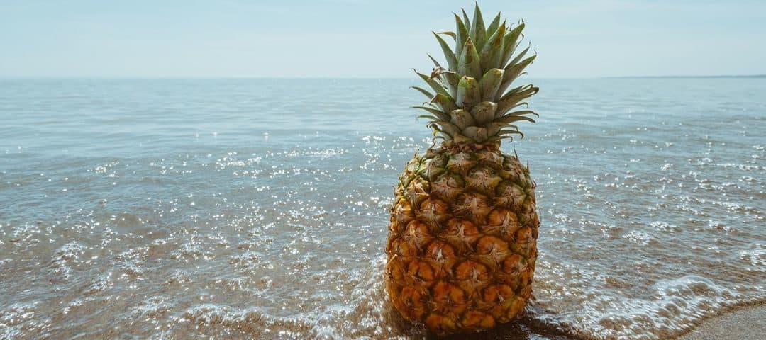 10 pysznych owoców, które pomogą Ci się nawodnić