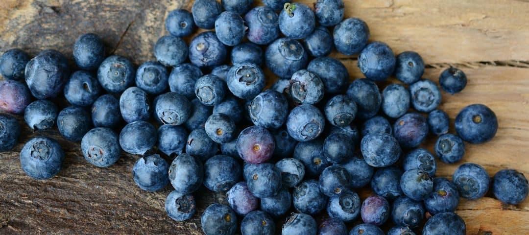 Jagody – właściwości zdrowotne, wartości odżywcze, na jakie choroby pomagają