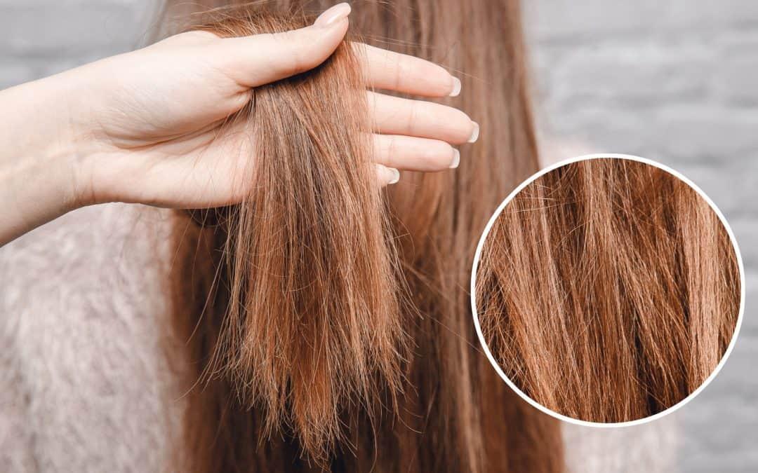 Włosy zniszczone zabiegami chemicznymi – jak je zregenerować?