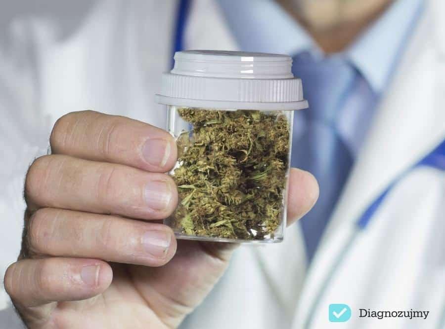 Marihuana – lek czy uzależniający narkotyk?