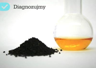 czarnuszka, olej z czarnuszki, zastosowanie oleju z czarnuszki