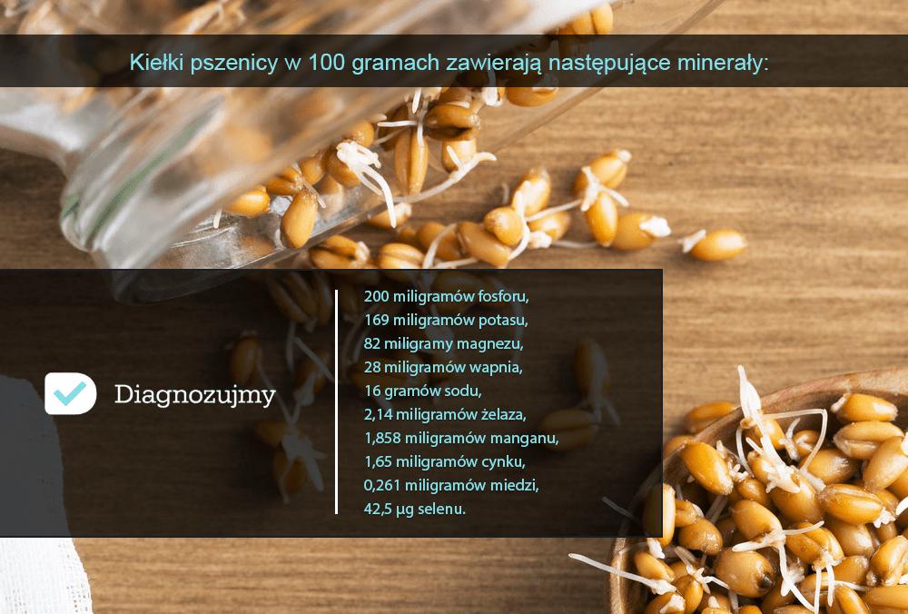 wartosci kielkow pszenicy