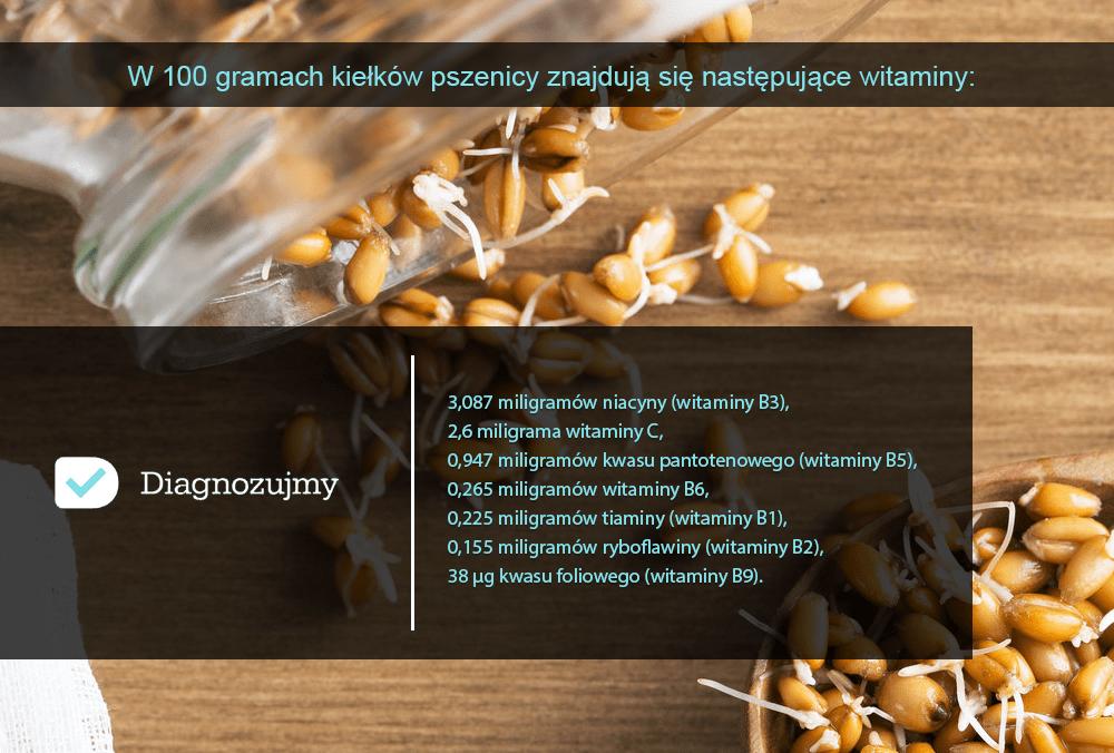 kiełki pszenicy