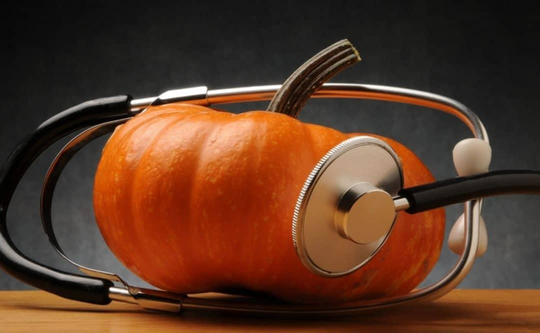 Dynia na zdrowie – lecznicze właściwości dyni